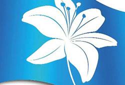 Hacıoğlu'na Beyaz Zambak sertifikası
