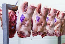 Helal sertifikası 'domuz etine' uzandı!