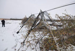 Kar yağışı elmayı vurdu