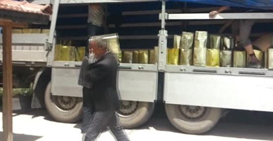 22 ton kaçak İran balı ele geçirildi