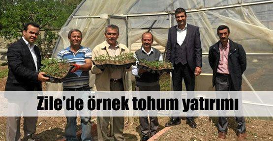 Anadolu tohumları yok olmayacak!