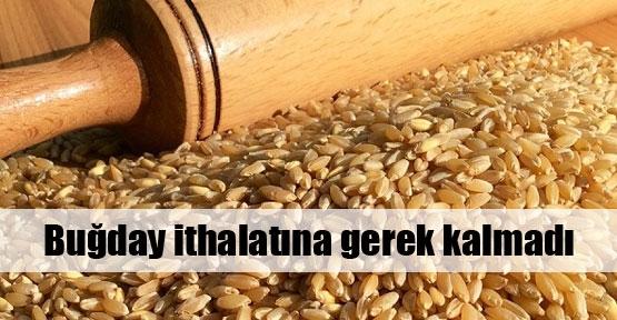 Buğday ithalatına gerek kalmadı