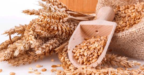 Buğday taban fiyatları açıklandı
