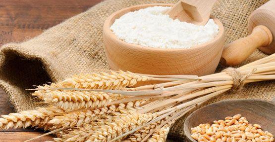 Buğday üretiminde artış beklentisi var