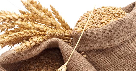 Buğday zirvesi Ankara'da toplanıyor