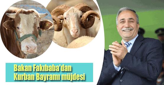 Erdoğan'dan 'uygun kurban' direktifi