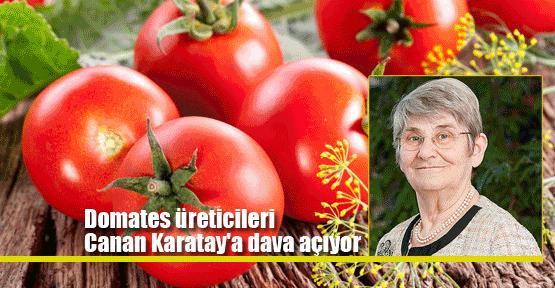 Domates üreticileri Karatay'a dava açıyor