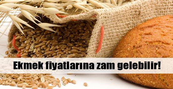 Ekmek fiyatlarına zam sinyali