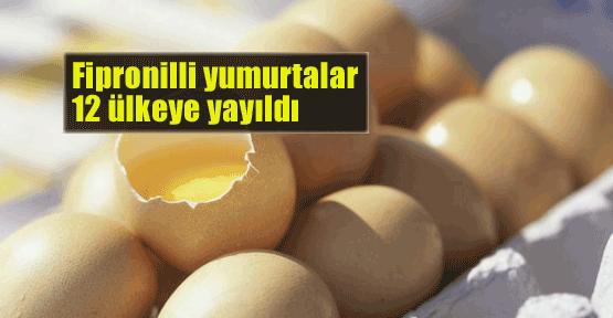 Fipronilli yumurta 12 ülkeye yayıldı