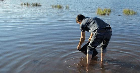 Göletler yavru balıklarla canlanıyor