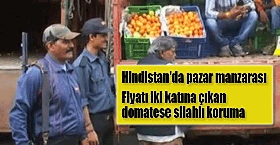 Hindistan'da domatese silahlı koruma