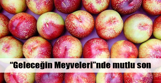 Milli Çeşit Listesi'ne üç yeni meyve