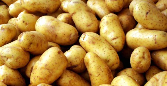 Patates stokları böyle tükenecek