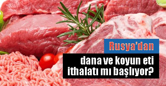 Rusya'da dana ve koyun denetliyoruz!