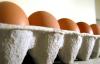 4 yumurtanın biri Afyon'dan