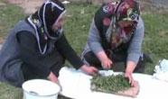 Yozgat'ta