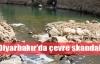 Diyarbakır'da içme suyu skandalı