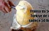 Fransa'da 500, Türkiye'de 50 lira