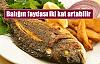 İşte en faydalı balık çeşitleri