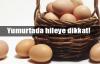 Köy yumurtası kandırmacası!
