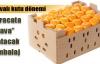 Meyve sebze ihracatına havalı kutu