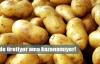 Patatesin başkenti altyapı kurbanı!