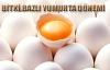 Tavuk yumurtasına alternatif olabilir mi?