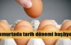 Yumurtaya