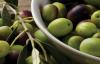 Zeytin alanları iyi korunmalı