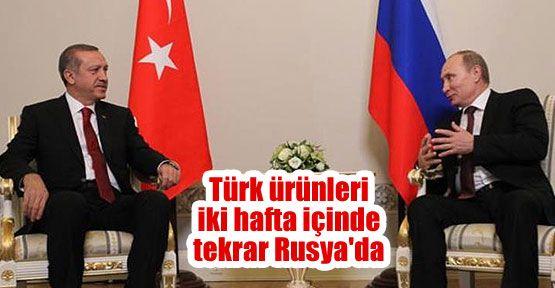 Türk ürünleri iki hafta içinde Rusya'da