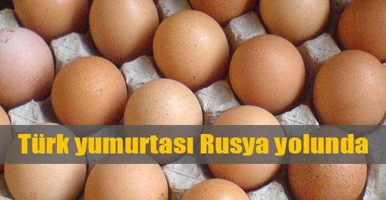 Türk yumurtası Rusya yolunda