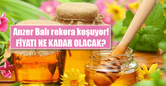 Türkiye bu yıl bal cenneti olacak