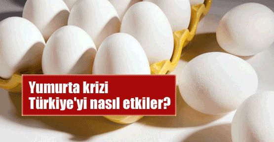 Yumurta krizi Türkiye'yi nasıl etkiler?