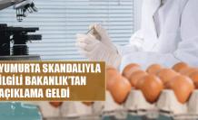 Bakanlık'tan geç gelen yumurta açıklaması