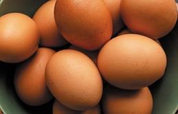 Yumurta fiyatı 1 yılda 2 kat arttı!