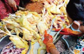 Kamboçya'da yeni kuş gribi vakası