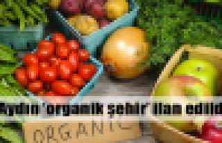 Aydın 'organik şehir' ilan edildi