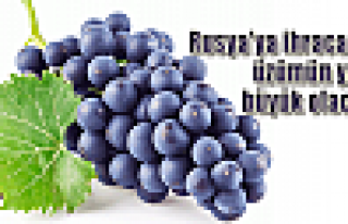 İhracatta üzümün yeri büyük olacak