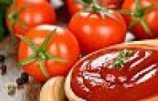 İşlenmiş domates ihracatı arttı