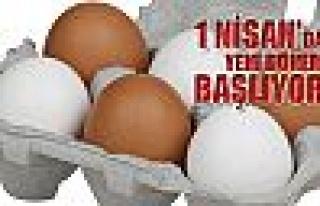 Kod olmayan yumurta satılmayacak