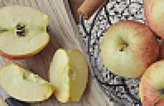 Meyvede kurt varsa ilaç yoktur!