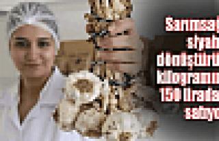 Sarımsağın kilosunu 150 liradan satıyor