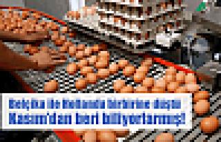 Yumurta krizi çatışmaya dönüştü!