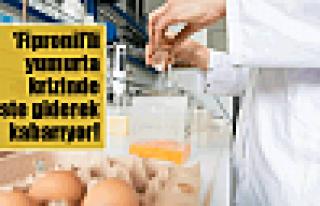 Yumurta krizinde liste kabarıyor!