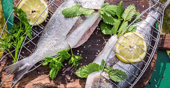 Kek - faydalı balık